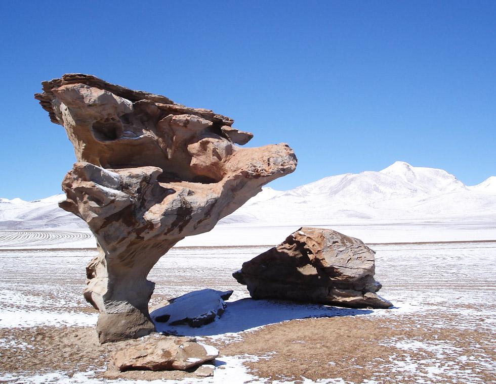 Thomas-Bauer-Suedamerika-Bolivien-Arbol-de-Piedra-960